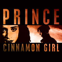 Cinnamon Girl single from Musicology, Columbia Records (2004)